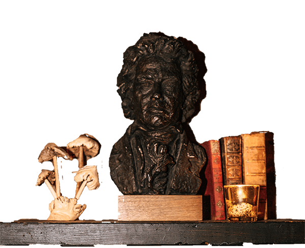 shelve and statue
